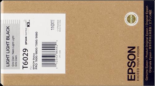 Epson C13T602900
