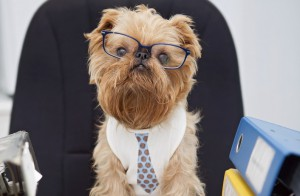 Hey ho, let's go – So kurbelt ihr eure Produktivität im Büro an