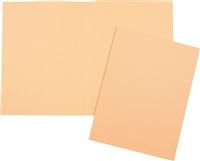Aktendeckel, chamois, 240x320mm, Inh. 10 5 Star 914530