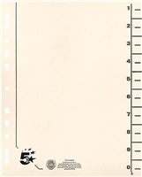 Trennblätter vollfarbig, chamois, RC Karton, 5 Star 914751