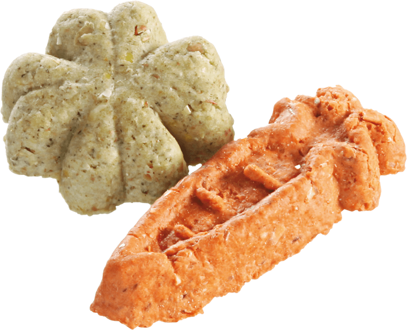 Animal Lovers Premium Hundekuchen - vegetarische Selektion - 10 kg - Veggie Snack (4005784080640)