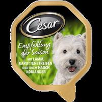 Cesar Empfehlung des Chefkochs - 150 g - Gruß der Saison (093975)