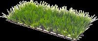 Dohse Plant mat - 1 - 12,5 x 2 cm (41530)
