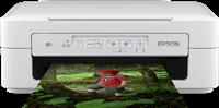 Dispositivo multifunzione Epson Expression Home XP-257
