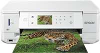 Dispositivo multifunzione Epson Expression Premium XP-645