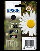 Epson T1811+