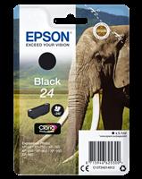 Epson T2421+