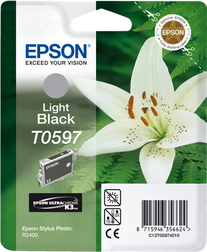 Epson Stylus Photo R2400 C13T05974010