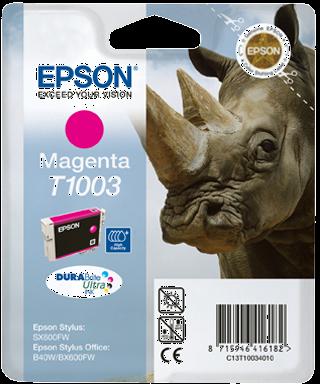Epson C13T10034010