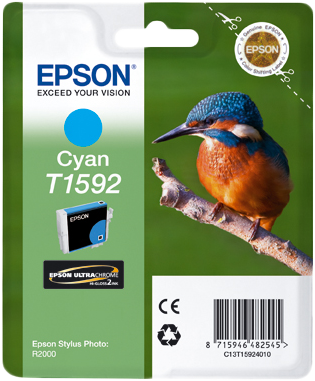 Epson Stylus Photo R2000 C13T15924010