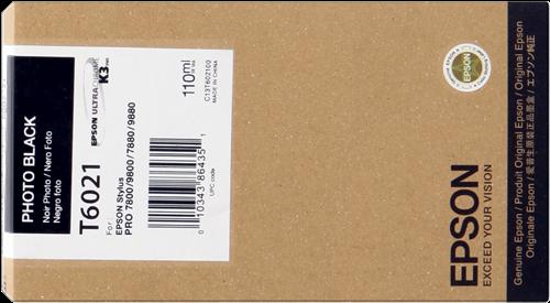 Epson C13T602100