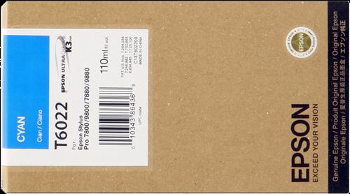 Epson C13T602200