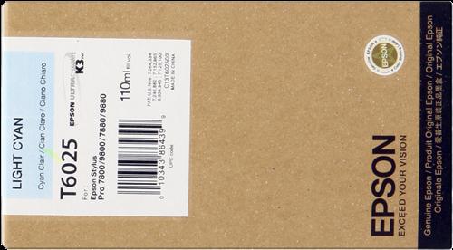 Epson C13T602500