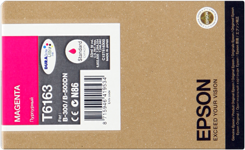 Epson C13T616300