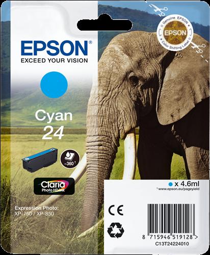 Epson C13T24224010