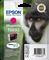 Epson C13T08934011