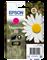 Epson C13T18034012
