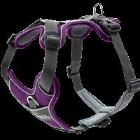 Hunter Geschirr Divo - violett/grau - Größe L (67583)