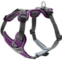 Hunter Geschirr Divo - violett/grau - Größe L/XL (67584)