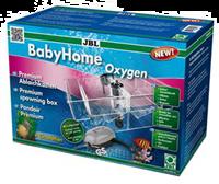 JBL BabyHome Oxygen - 1 Stück (4014162643209)