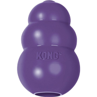 Kong Treat Toy Senior