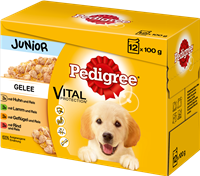 Pedigree Portionsbeutel - Junior - in Gelee