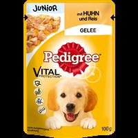 Pedigree Portionsbeutel - Junior - in Gelee