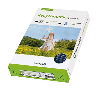 Recyconomic 870693