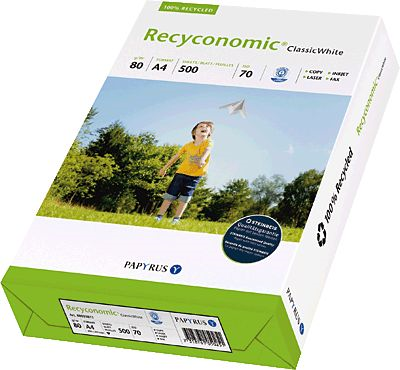 Recyconomic 88031811