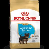Royal Canin Yorkshire Terrier 29 Junior - 500 g (3330)