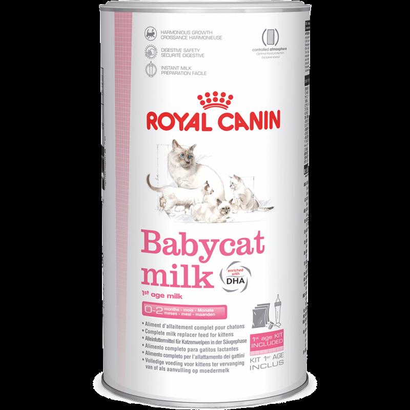 Royal Canin Babycat Milk - 300 g (1389)