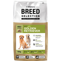 Wildsterne Breed Selection - Golden Retriever