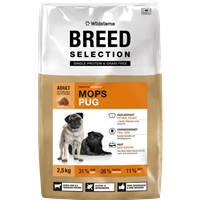 Wildsterne Breed Selection - Mops