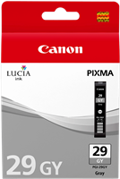 ink cartridge Canon PGI-29gy