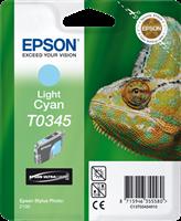 Cartucho de tinta Epson T0345