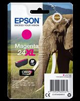 ink cartridge Epson T2433