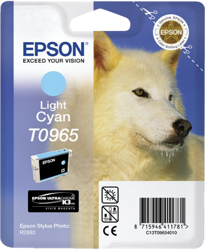 Epson Stylus Photo R2880 C13T09654010
