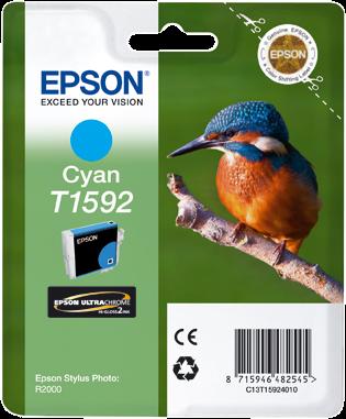 Epson Stylus Photo R2000 C13T15924010