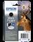 Epson Stylus Office BX625FWD C13T13014012