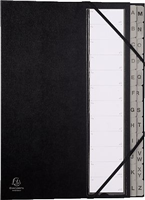 Ordnungsmappe Ordonator mit Register Exacompta 56090E