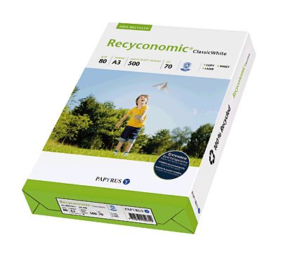 Recyconomic 88031813