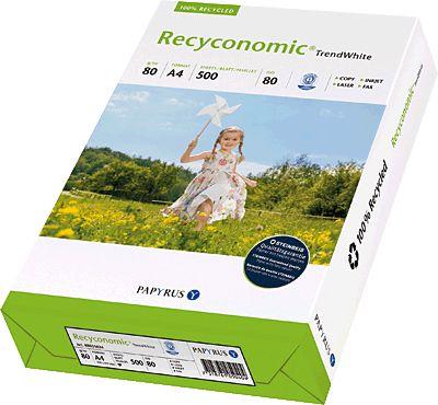 Recyconomic 88031824